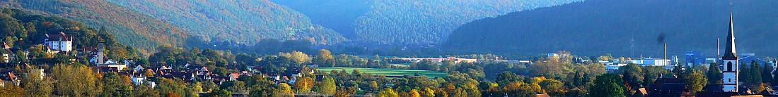 Panorama Lohr