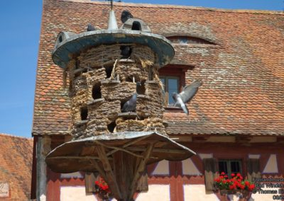 Freilandmuseum Bad Windsheim 26