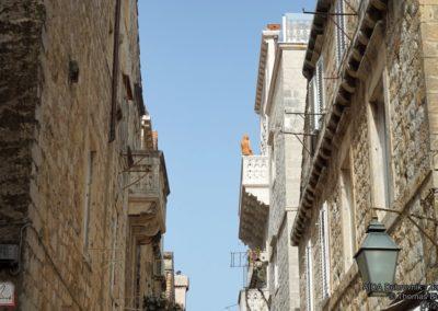 AIDA_Dubrovnik_Zadar_018